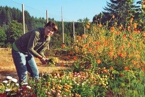 12ambersflowers
